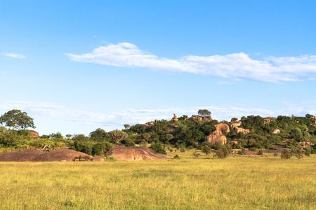 Clouds over savannah. Yellow field. Serengeti, Tanzania