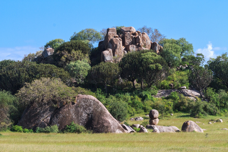 Panorama of Serengeti. Stones and rocks. Tanzania, Africa