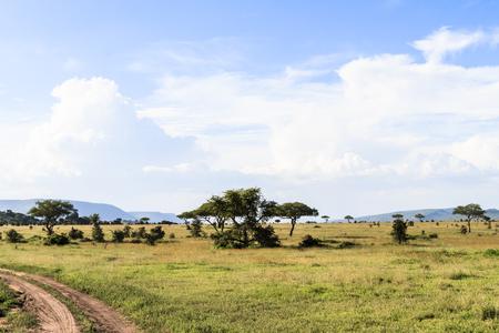 Cloudy landscape in the Serengeti. Tanzania, Africa