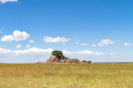 Landscapes of Serengeti. Clouds and stones on endless plain. Tanzania, Africa (Rev.2)
