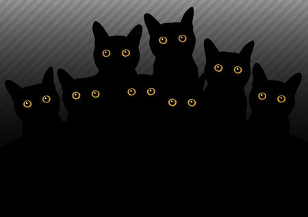 group of cats in the dark