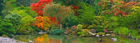 Japanese garden with pond panoramic view