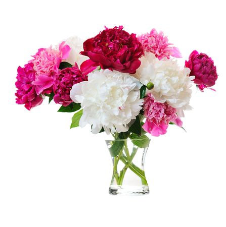 Photo for bunch of colorful peonies in glass vase on white background - Royalty Free Image