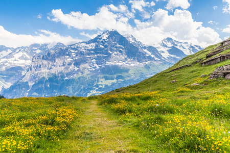 View of the famous Eiger north face on the hiking path, on the bernese oberland in Switzerland