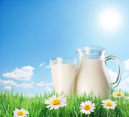 Milk jug and glass on the grass with chamomiles. On a background of the sunny sky with clouds.