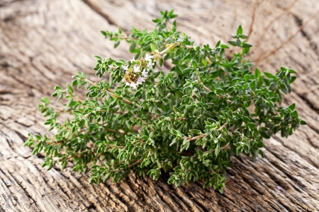 Thyme herb on wooden table