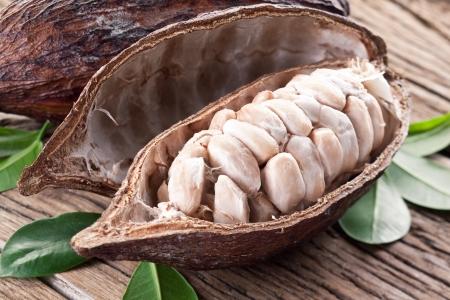 Cocoa pod on a dark wooden table
