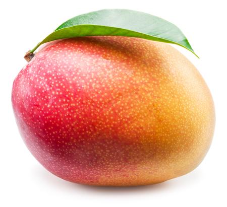Mango fruit on the white background.