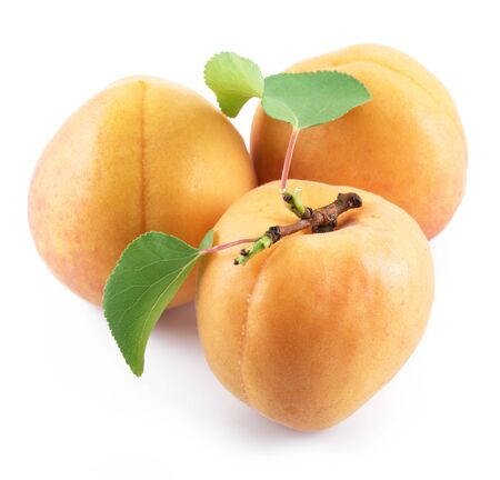 Ripe apricots with leaves isolated on the white