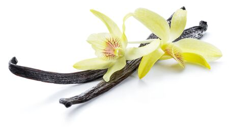 Photo for Dried vanilla stick and orchid vanilla flower isolated on white background. - Royalty Free Image