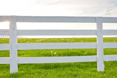 White wooden horse fence on country site at spring.