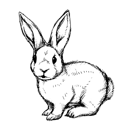 Ilustración de Black and white rabbit. Hand draw, vector illustration for a card or poster. - Imagen libre de derechos