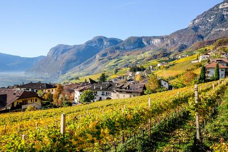 Cortaccia in Autumn, Strada del Vino, South Tyrol