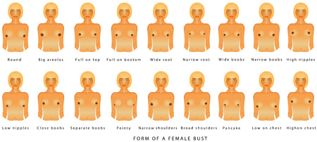 Illustration pour Form of a female bust. Female breast of different sizes on a white background. Front view of the woman breast for advertising and medical publications. Sizes of busts, from A to F - image libre de droit