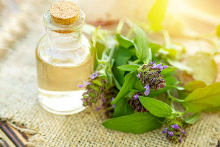 Foto de Prunella vulgaris, self-heal, carpenter's herb purple flower tincture in bottle ready for drying and making tea and infusions. Useful herb for use in cosmetology and alternative medicine - Imagen libre de derechos