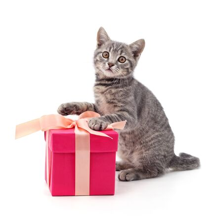 Photo for Kitten and gift isolated on a white background. - Royalty Free Image