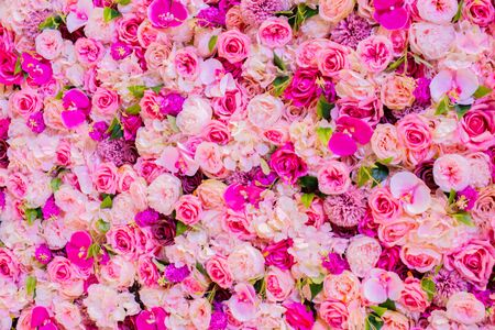 Photo for Colorful roses background for spring and summer - Royalty Free Image