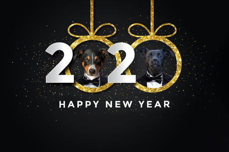 Happy new year 2020 with two Dogs