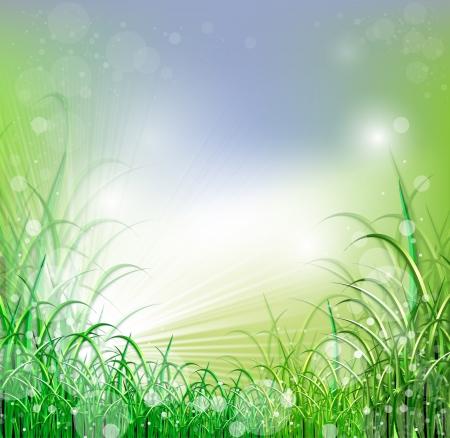 Beatiful green field with blur heaven and sunrise ray
