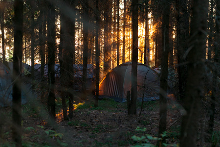 Tourist tent in the forest at sunset near the Volga river on the summer festival WAFEst