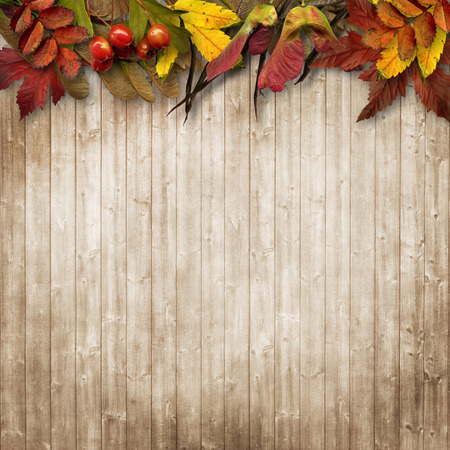 Autumn leaves border on vintage wooden background