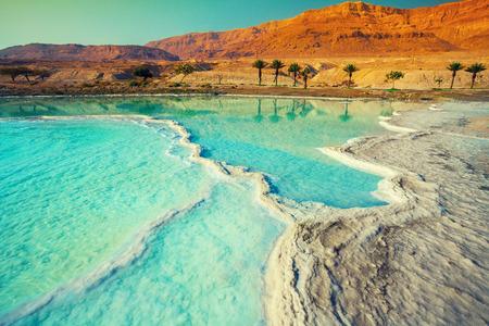 Foto de Dead sea salt shore - Imagen libre de derechos
