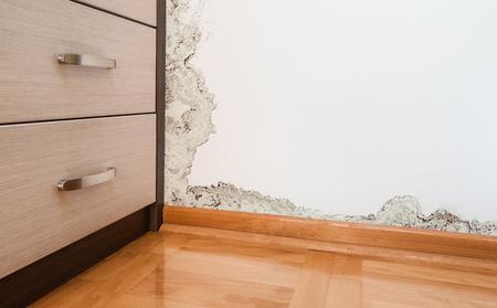 Photo pour Mold and moisture buildup on wall of a modern house - image libre de droit