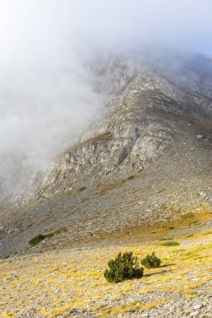 Photo for Mystical clouds in mount at central Greece - Royalty Free Image