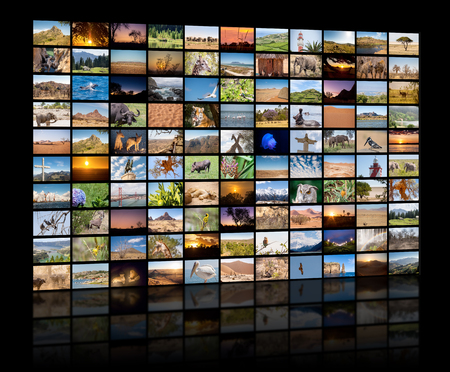 Photo pour A variety of images of Landscapes and Animals as a big image wall, documentary channel - image libre de droit