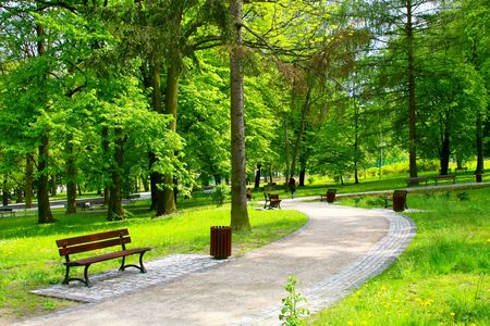 Beautiful park