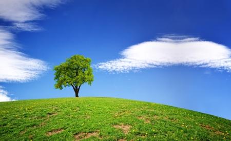 Photo pour Green Planet - image libre de droit