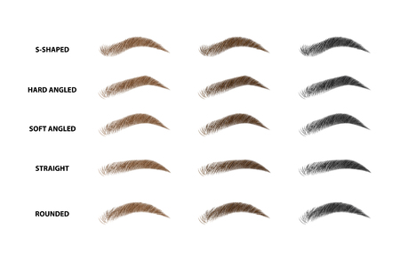 Illustration pour Types of eyebrows vector illustration - image libre de droit