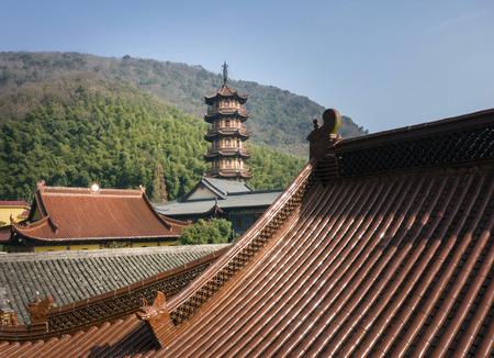Wangdu88160400061