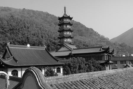 Wangdu88160400070