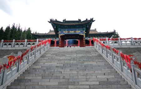 Wangdu88160500607