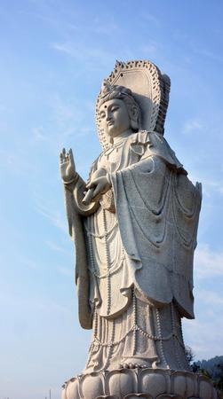 Wangdu88170203100