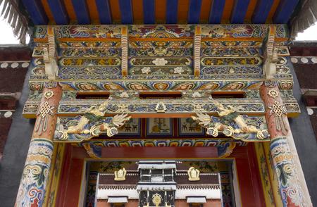 Wangdu88171100517