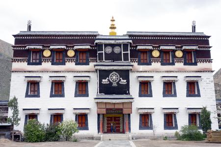 Wangdu88171100549
