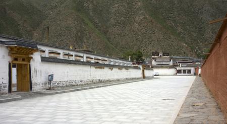 Wangdu88171100574