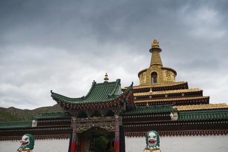 Wangdu88171100730