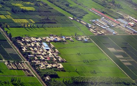 Yinchuan Farm