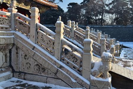 Wangzhenglai161200017