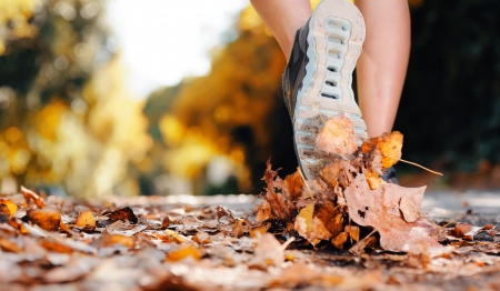 close up of feet of a runner running in autumn leaves training for marathon and fitness healthy lifestyleの写真素材