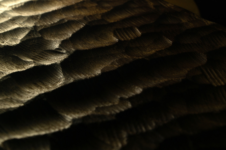 Carved wood waves texture, background. Raw carved wooden surface for abstract background. Wooden back-lit sea waves.