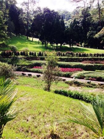 Queen Sirikit Botanical Gardens Thailand