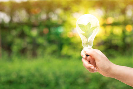 Photo for Woman hand hold the light bulb with bright and a sapling tree with growing inside  in the public park, Idea nature conservation and saving energy concept. - Royalty Free Image