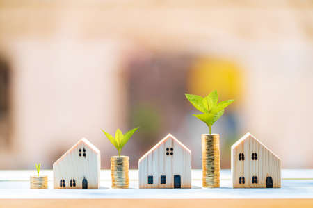 Photo pour Stacked gold coins and plant growing on the top and wooden home model put on the blue vintage wood board in the public park, Business investment and loans for real estate concept. - image libre de droit