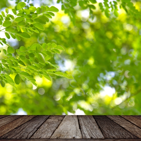 Wooden texture on green leaf background