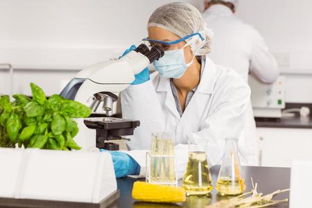 Foto de Food scientist using the microscope at the university - Imagen libre de derechos