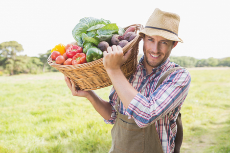 Photo for Farmer carrying basket of veg on a sunny day - Royalty Free Image